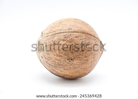 Isolated coconut with hard husk / shell for making coconut milk, oil, cosmetic or cooking on white background - stock photo