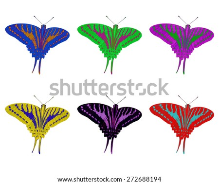 Isolated colorful Spot Swardtail butterfly ( Graphium momius ) with clipping path - stock photo