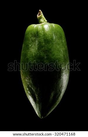 isolated flesh papaya on pure black background - stock photo