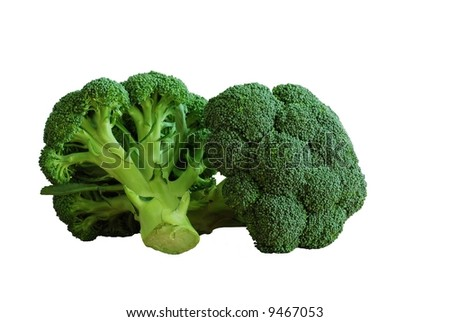 Isolated fresh green heads of broccoli - stock photo