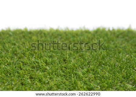 isolated grass - stock photo