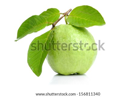 isolated guava on white background - stock photo