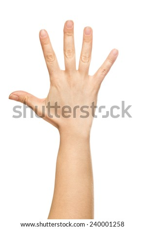 isolated hand, number five - stock photo