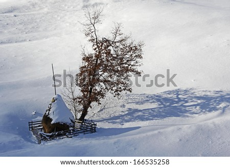 Isolated haycock, wooden fence and tree shadow on snow - stock photo
