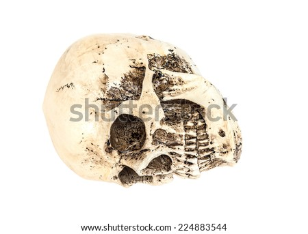 Isolated human skull on white with clipping path - stock photo