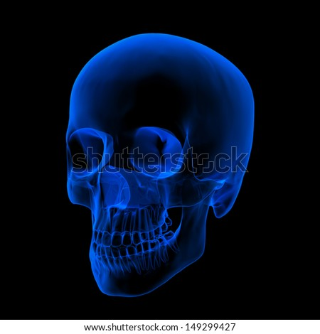 Isolated human x ray skull on black background - right front view