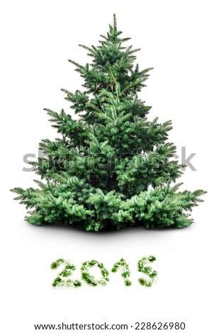 Isolated image of a Christmas tree on a white background - stock photo