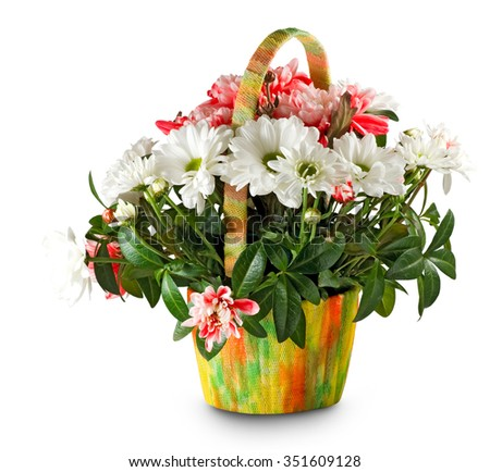 Isolated image of beautiful flowers in the basket closeup