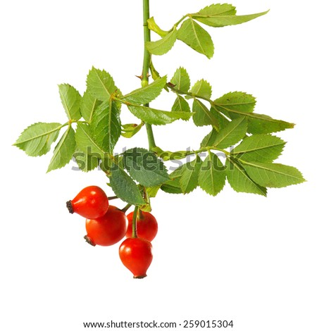 Isolated image of gooseberries on a white background