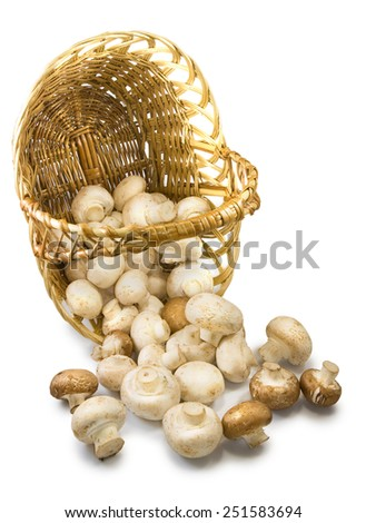Isolated image of  inverted baskets with mushrooms - stock photo