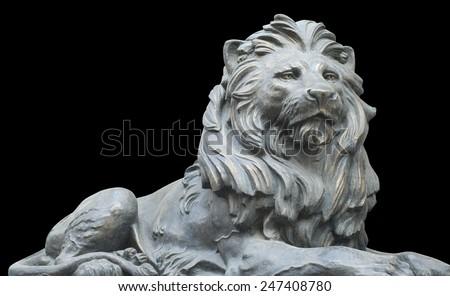 Isolated lion on black background - stock photo