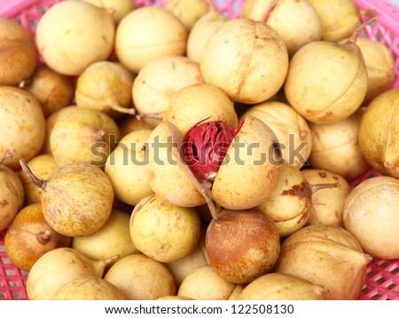 Isolated Nutmeg - stock photo