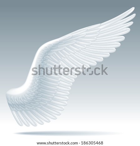 Isolated raster version of vector white wing of a bird with detailed feathers - stock photo