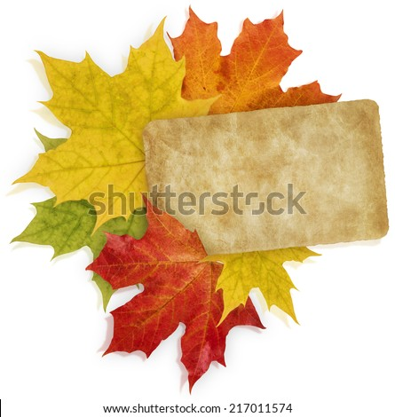 Isolated Red, Yellow and Orange Maple leaves and old paper card