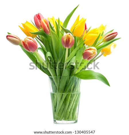 Isolated shot of a bunch of Red and Yellow Tulips. Top view