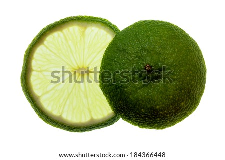 isolated slice and end of lemon - stock photo