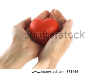isolated sponge heart and hands with room for copy ,text - stock photo