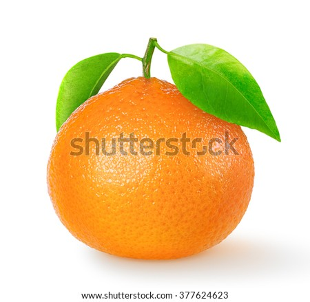 isolated tangerine. One tangerine or clementine fruit isolated on white background with clipping path