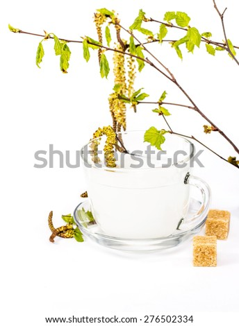 Isolated transparent cup of birch sap decorated with beautiful birch leaves - stock photo