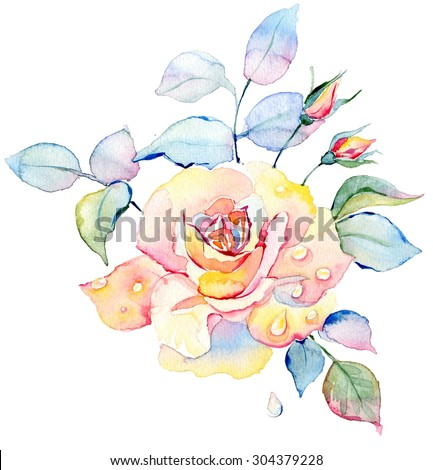 Isolated watercolor hand drawn roses bouquet on white background. - stock photo