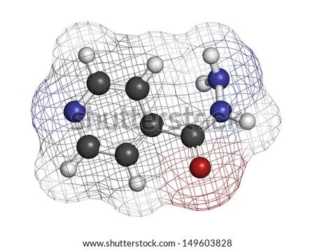 amoxicillin (amoxil) 500 mg capsule