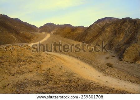 Israeli desert. - stock photo