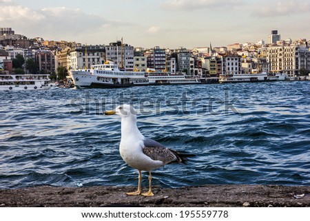 Istanbul seafront panoramic view. - stock photo