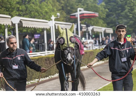 Istanbul, Turkey, April 06, 2016: Race Horse with its jockey and stablemans