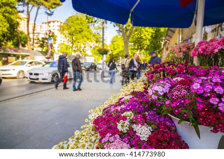 Istanbul, Turkey - May 1, 2016: Bagdat Avenue (Turkish: Bagdat Caddesi) is a notable high street located on the Anatolian side, Istanbul. The street runs approximately 14 km  from Maltepe and Kadikoy. - stock photo