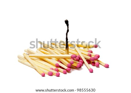 It is a lot of matches on a white isolated background. One match burned down. - stock photo