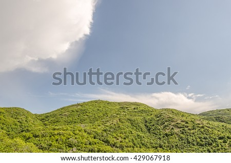 It's rare to see this much green in Utah.  All the foliage has been greener and more abundant this year.  The clouds dropped a tiny bit of rain which was not enough to get wet. - stock photo
