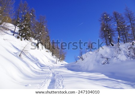 Italian Alps. View of a snow-covered slope with ski traces. - stock photo