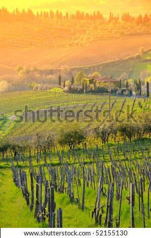Italian Chianti landscape - stock photo
