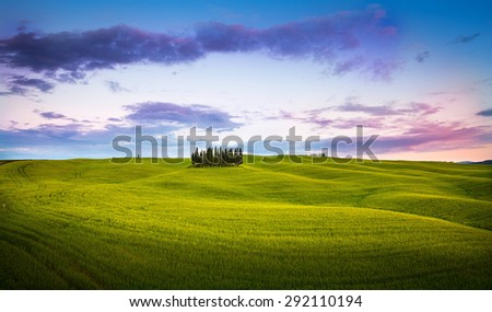 Italian countryside, during sunset. Cypresses over golden hills with colorful sky.