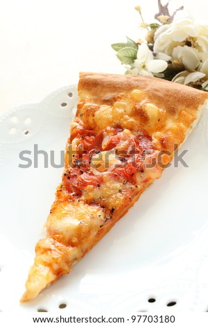 Italian cuisine, cheese and tomato pizza on elegant white dish