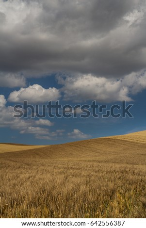 Italian Fields and Clouds