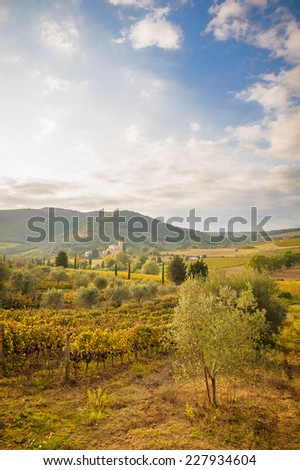 Italian medieval 'Church between vineyards, Tuscany