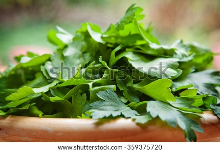 Italian parsley in a wooden bowl with natural background - stock photo