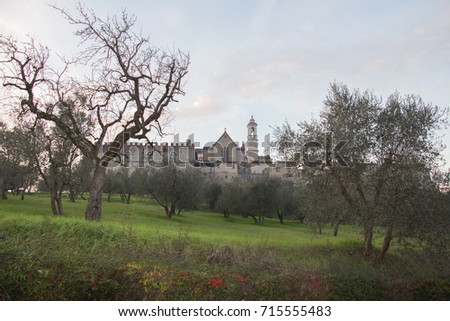 Italy, Florence - December 24 2016: the view of the Florence Charterhouse church and green grass and trees on foreground, Certosa di Galluzzo di Firenze, Tuscany, Italy.
