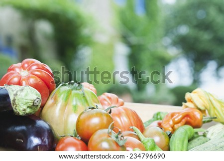 Italy, Tuscany, Magliano, Close up of various vegetables - stock photo
