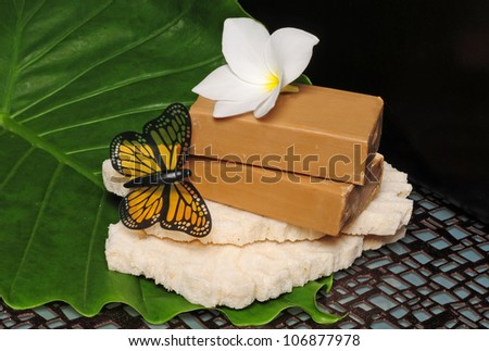 Items for a spa in the spring with soap a flower and a butterfly - stock photo