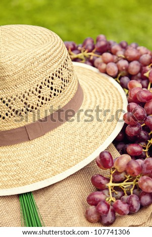 Items for picking grapes in the summer.