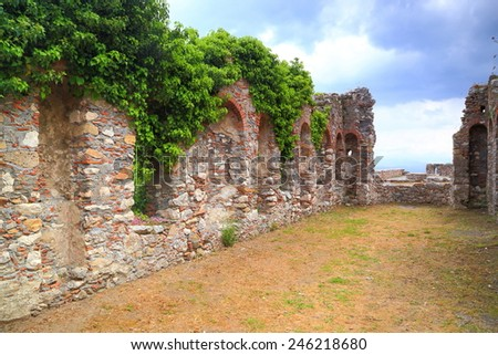 Ivy above the ruins of old buildings from the Byzantine city of Mystras, Peloponnese, Greece - stock photo