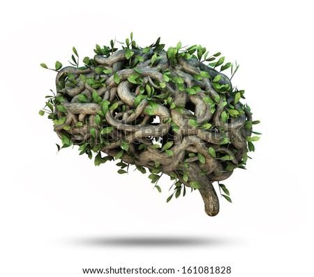 ivy brain shape  - stock photo