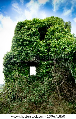 Ivy covered Medieval castle ruins in Carrigognunnel Ireland - stock photo
