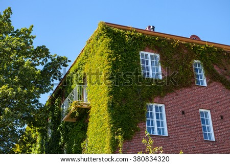 Ivy greenery on the corner of a brick wall, building in Helsinki, Finland - stock photo