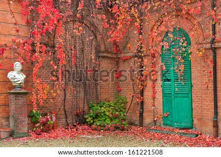 Ivy with red leaves grow on red brick wall in autumn in Racconigi park, Northern Italy. - stock photo