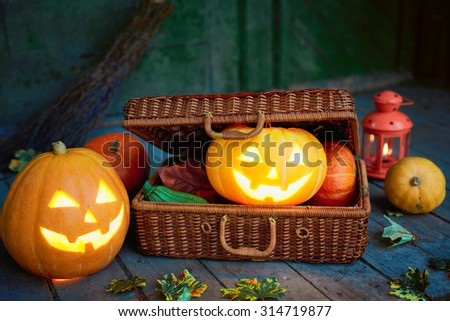 Jack-o-lanterns and cucurbits in wattled suitcase