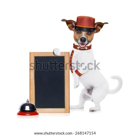 jack russell bellboy dog holding a blank and empty blackboard at hotel, where pets are welcome and allowed,isolated on white background - stock photo