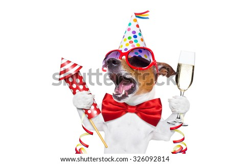jack russell dog celebrating new years eve with champagne and singing out loud, with a fireworks rocket , isolated on white background - stock photo